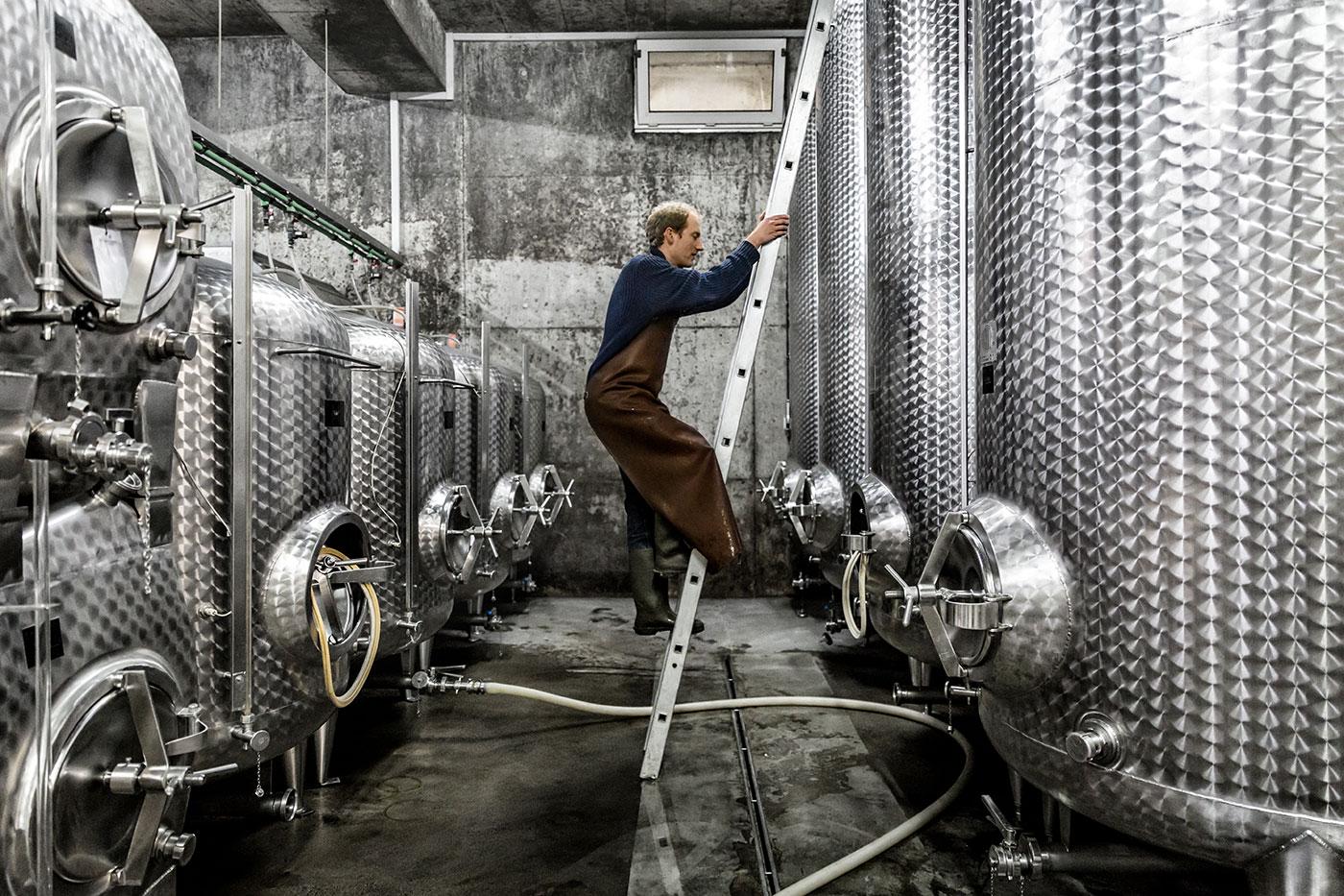 Die_Weinmacher_Franken_Das_Weinjahr_Winter_Kellerarbeit